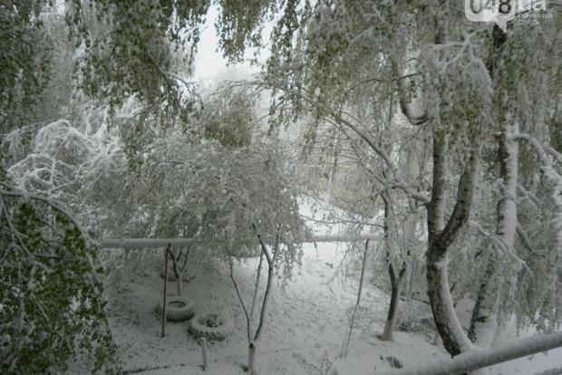 Опубликованы шокирующие фото снегопада в Одесской области