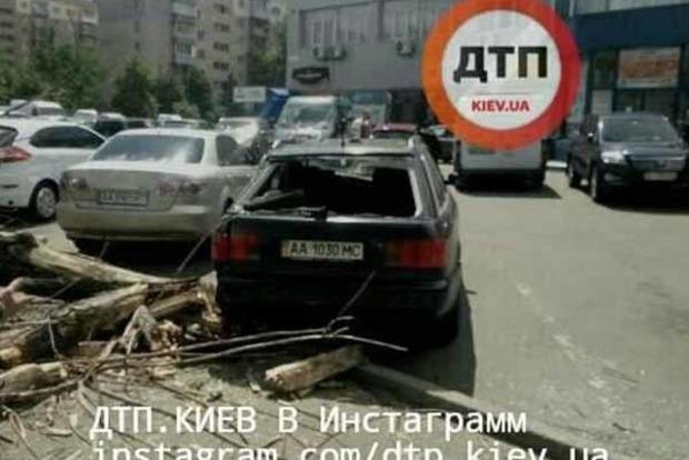 В Киеве на авто рухнуло дерево, травмирована 12-летняя девочка