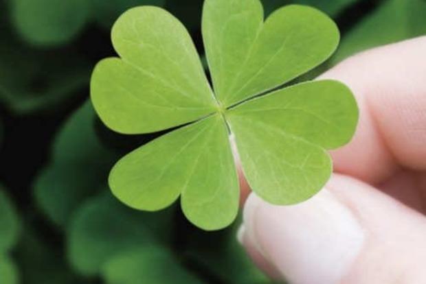 5 найважливіших прикмет на удачу перед відповідальною справою