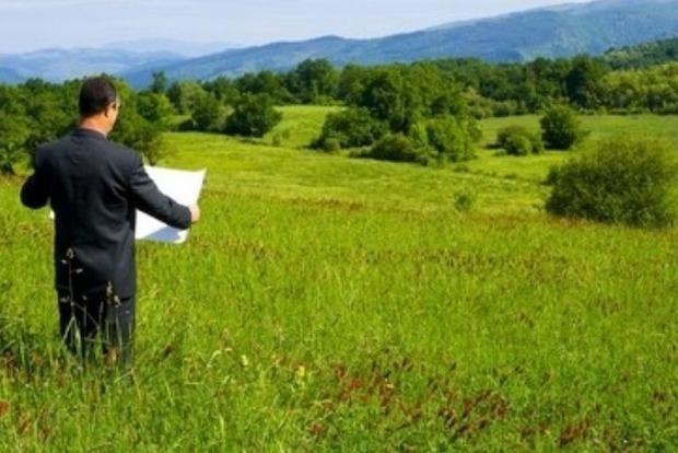 Как правильно сдать землю в аренду и не попасть в ловушку мошенников