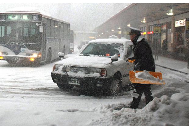 В Токио впервые за 54 года выпал ноябрьский снег