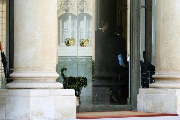 Президент Франции забрал собаку из приюта