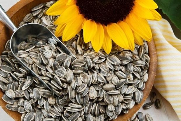 Пять главных причин отказаться от семечек