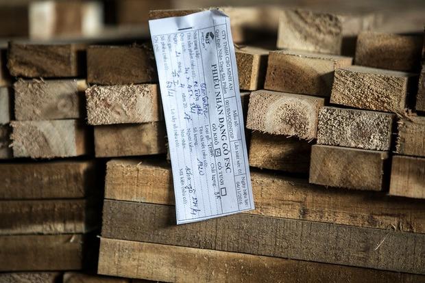 Украинцам на заметку. Как Вьетнам борется с незаконной вырубкой леса и при чем тут акация и Ikea