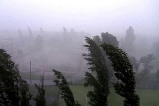 Закройте окна: в Киеве ожидается ураганный ветер