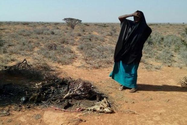 В Сомали за два дня от голода умерли 110 людей