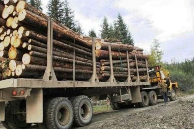 В Закарпатской области лесовоз упал в пропасть, двое человек погибли