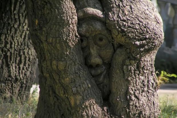 Звідки пішла традиція стукати по дереву