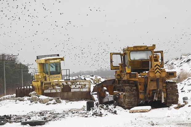 Во Львове заявили, что мусор вывезли почти с половины площадок