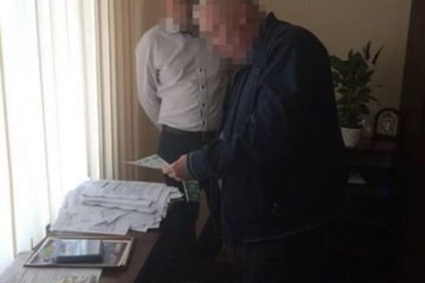 Двоє поліцейських брали хабарі за перевезення лісоматеріалів дорогами Чернігівської області