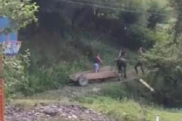 В селе на Закарпатье нелюди до смерти забили лошадь