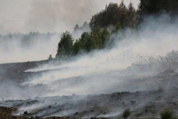 В Киевской области тлеет 42 га торфяников