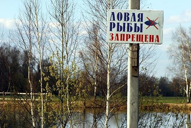 Дорогое браконьерство. В Украине могут поднять штрафы до сотен тысяч гривен