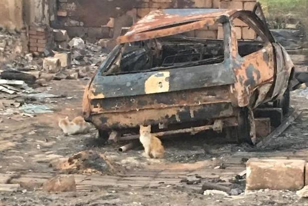 На Донбассе выгорело целое село – Жебривский