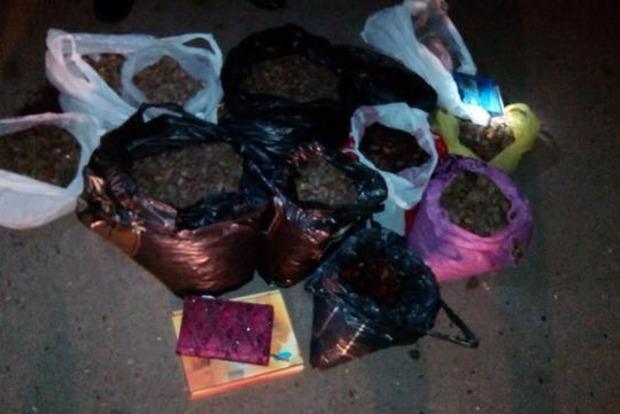 В Ровенской области задержана крупная партия янтаря