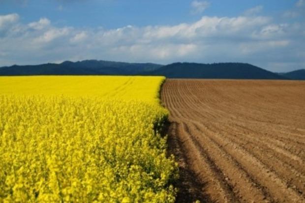 Європейський суд визнав мораторій на продаж землі в Україні порушенням прав людини