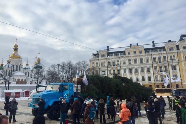 На Софиевскую площадь привезли главную елку Украины