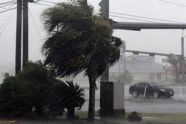 Під час урагану «Флоренс» в США загинули мати з немовлям