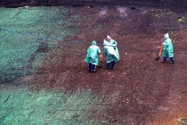 На стадіоні «Чорноморець» пофарбували землю в зелений колір