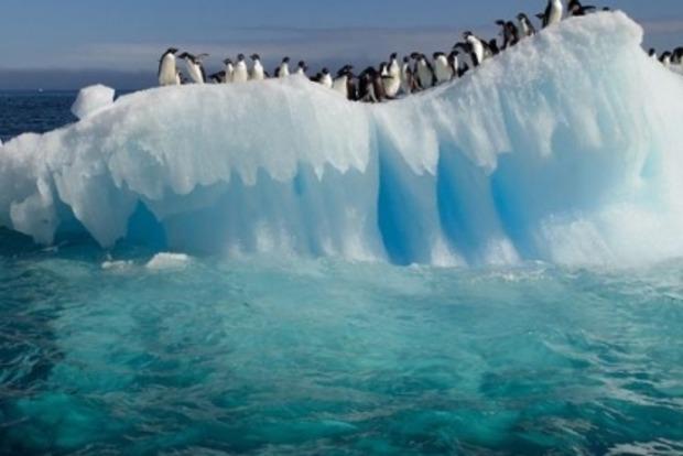 Ученые показали на видео потоки воды в Антарктиде