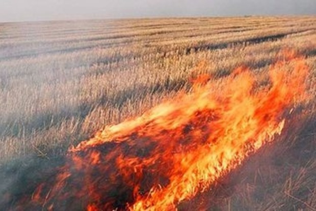 На Львовщине горит трава и мусор на площади около 3 тыс. м2