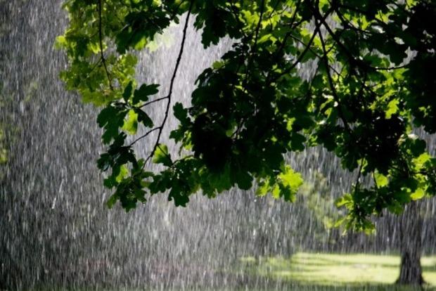 В Украине 26 мая тепло и дождливо