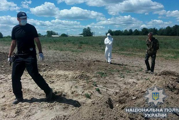 Через пташиний могильник на Київщині затримали власника Гаврилівських курчат