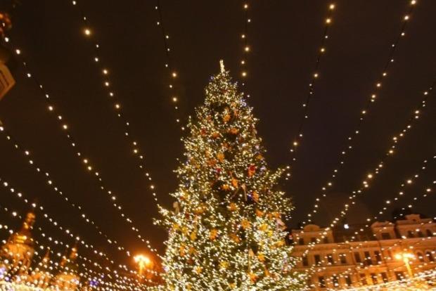НаПрикарпатье срубили главную новогоднюю елку Украинского государства