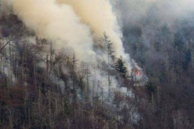 В Теннесси объявлено чрезвычайное положение из-за лесных пожаров