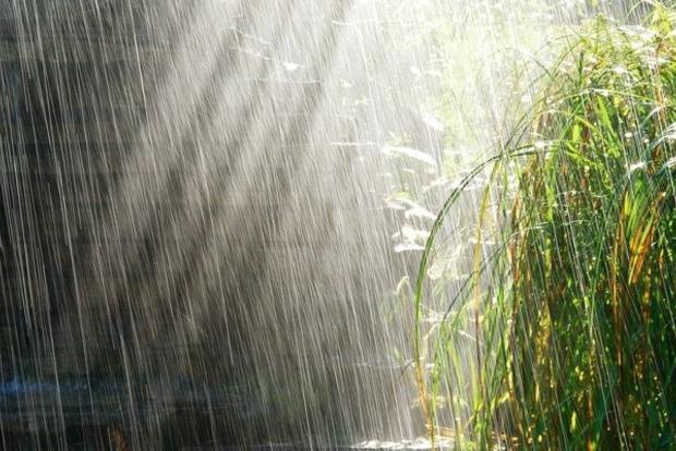 В Украине 31 мая пройдут дожди с грозами