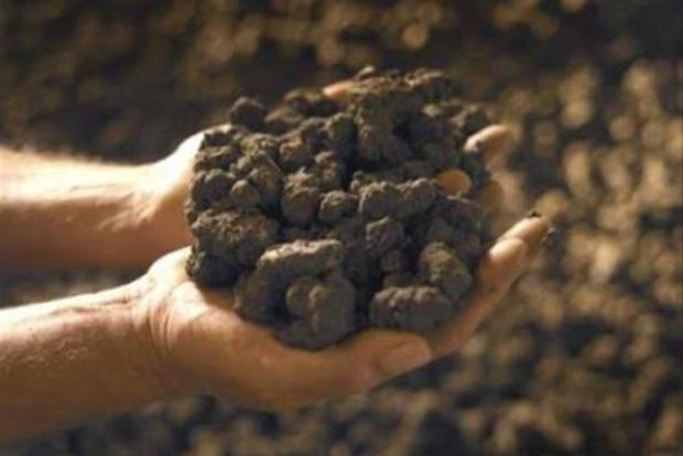 На Винничине чиновник незаконно добыл глины на 10 миллионов гривен