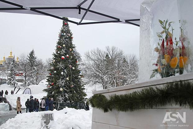 Как продлить жизнь новогодней елке: 5 советов
