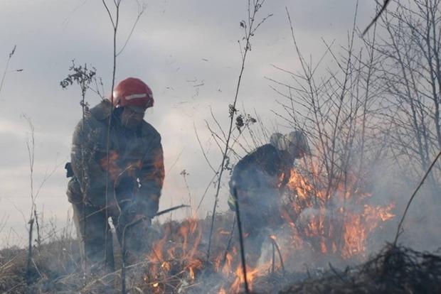 Более 100 гектаров торфяников тлеет в Полтавской области