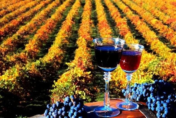 Вино в Молдове признают пищевым продуктом, а не алкоголем