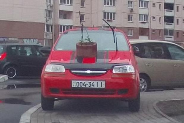 Киевляне подарили горе-водителю клумбу на капот