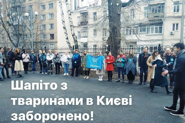 Суд запретил использовать животных в цирках в Киеве