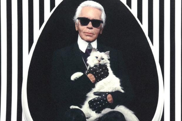 Состояние Лагерфельда может получить его кошка