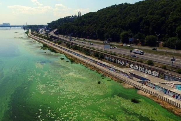 Из-за загрязнения Днепра купального сезона скоро не будет вообще
