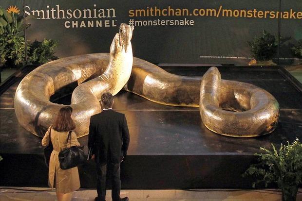 Тітанобоа - який вигляд мала найбільша змія на планеті