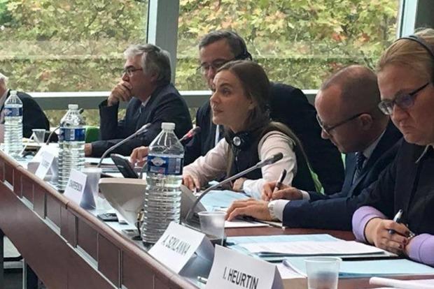 Нардеп от Самопомичи Сотник возглавила юридический комитет ПАСЕ