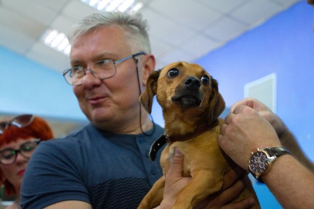 Европа! В Днепре чипуют всех собак и обяжут хозяев убирать за ними кучки