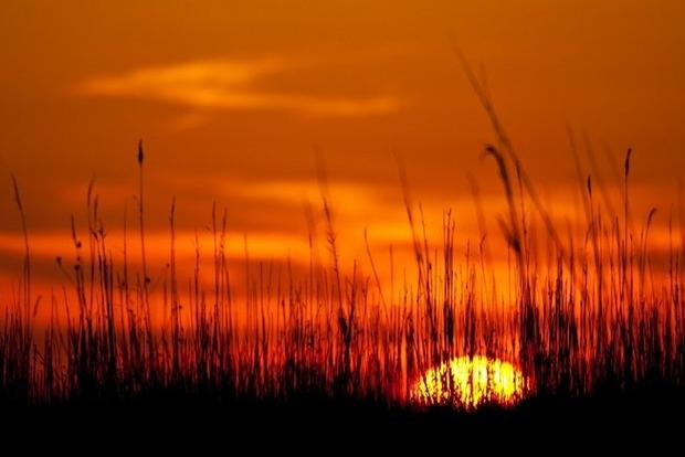 Сказочно красивый закат в Одессе. По народным приметам - завтра будет ветрено