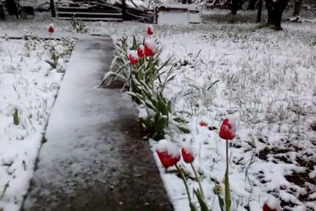 Оккупированный Крым накрыло аномальным снегопадом. Опубликовано видео