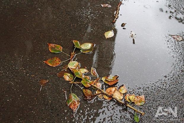 В столице ожидается сильный дождь и ветер