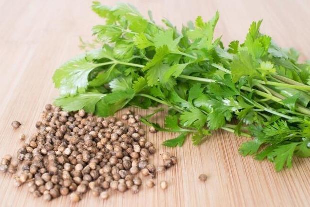 Названо растение, быстро «выгоняющее» холестерин и токсины из организма