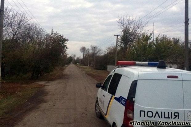 Автомобиль в Харьковской области убил девочку, идущую в школу