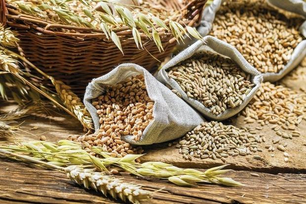 Падение урожая зерновых: в Украине к концу сезона может закончится пшеница