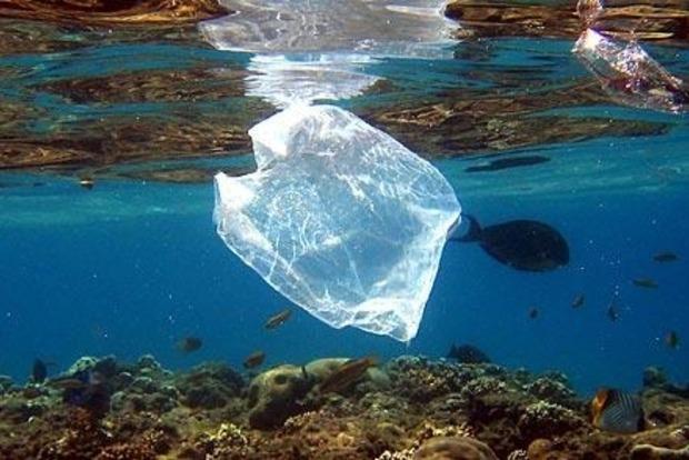 Австралия откажется от пластиковых пакетов ради сохранения окружающей среды