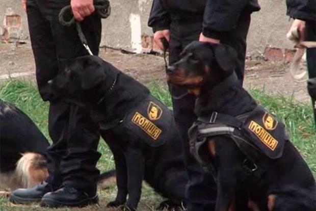 Улицы Харькова будут патрулировать полицейские с собаками