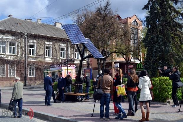 Тернополяне угробили спасительные солнечные деревья